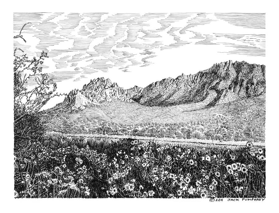 Framed Prints And Note Cards Of Ink Drawings Of Scenic Southern New Mexico. Framed Canvas Prints Of Pen And Ink Images Of Southern New Mexico. Black And White Art Of Southern New Mexico Drawing - Florida Mountains And Poppies by Jack Pumphrey
