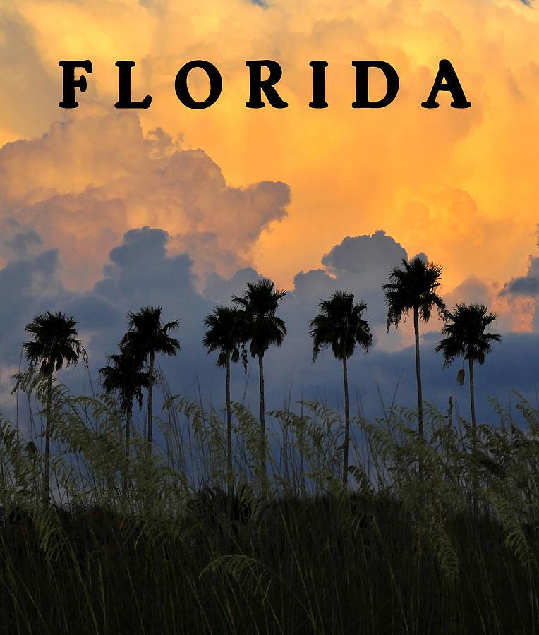 Florida Poster Photograph