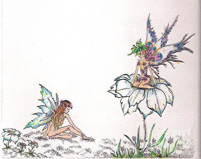 Flower Fairies Drawing