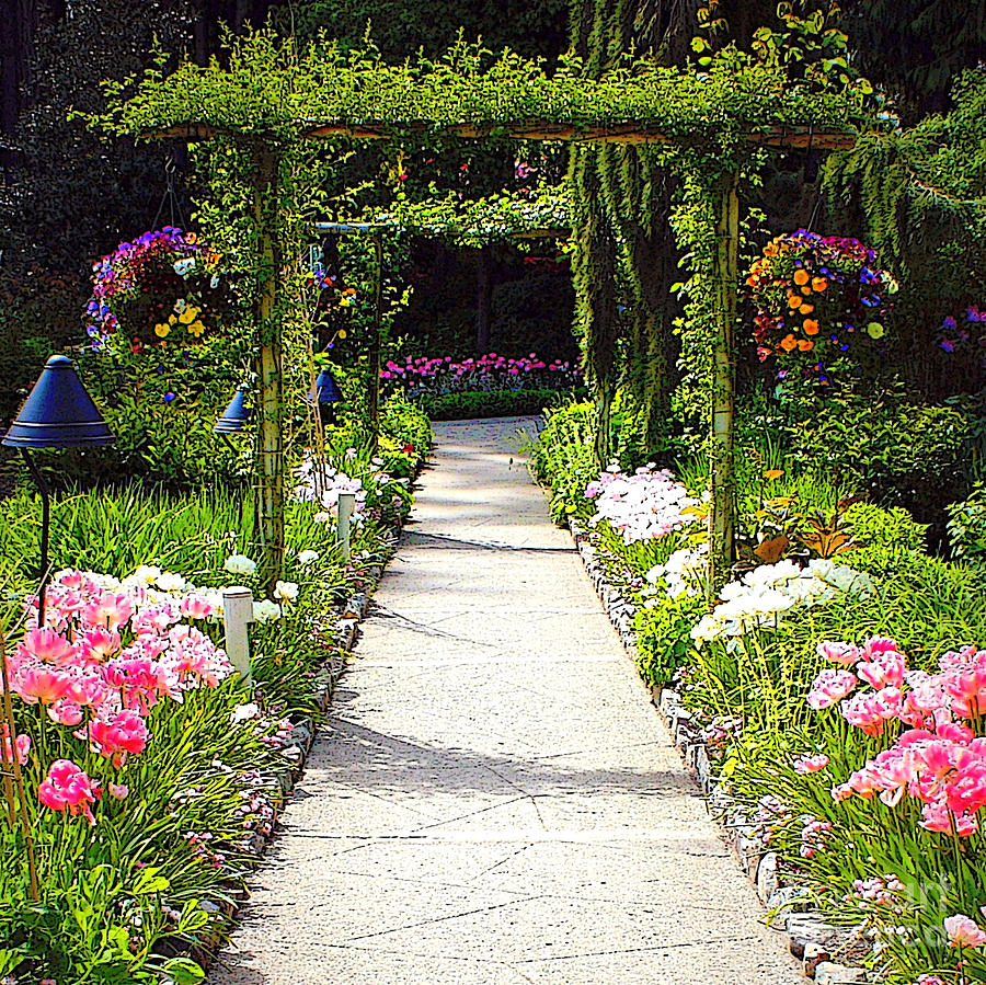 Flower garden digital painting photograph by carol groenen for Garden painting images