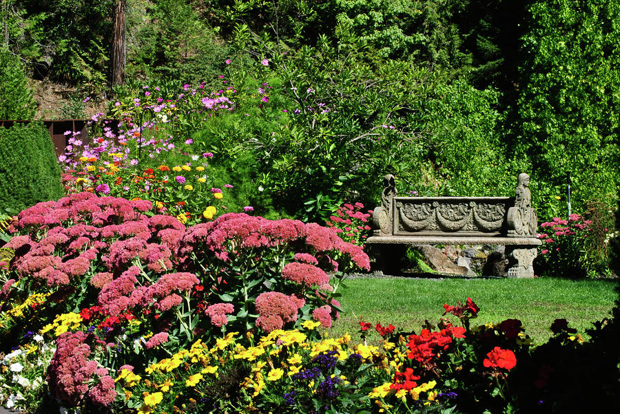 Hot Flower Garden : Flower garden at belknap hot springs photograph by dan