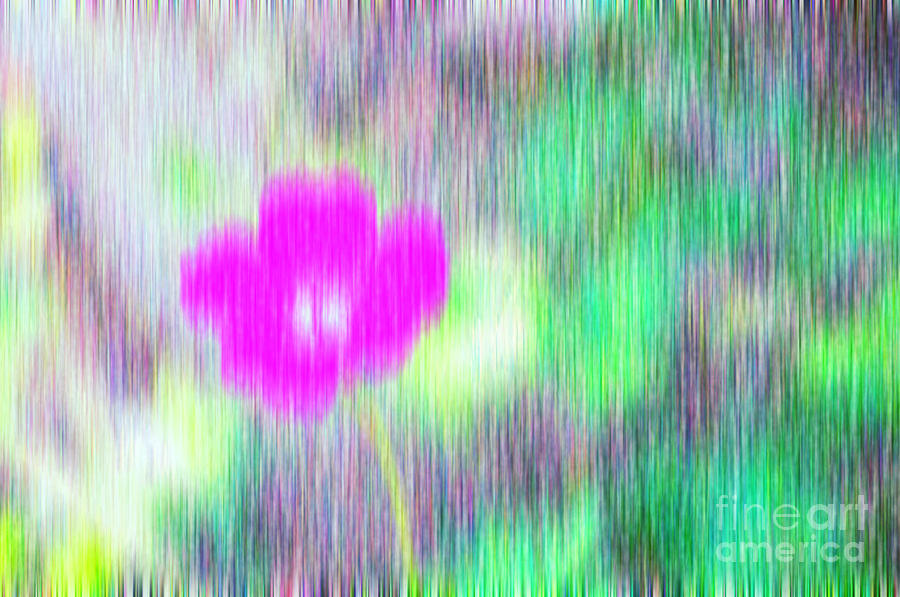 Flower In The Rain Photograph  - Flower In The Rain Fine Art Print
