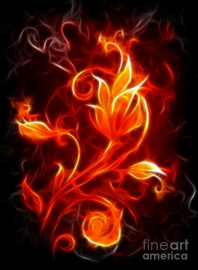 Flower Of Fire Mixed Media By Pamela Johnson