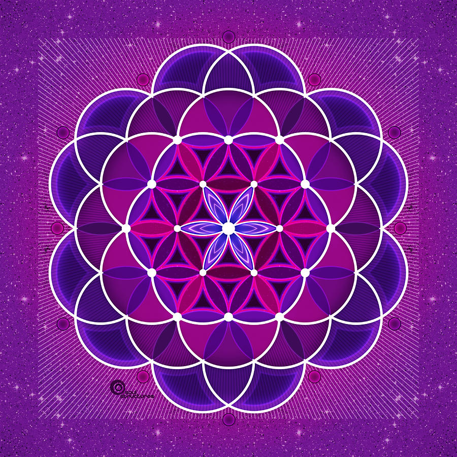 Flower Of Life Digital Art  - Flower Of Life Fine Art Print