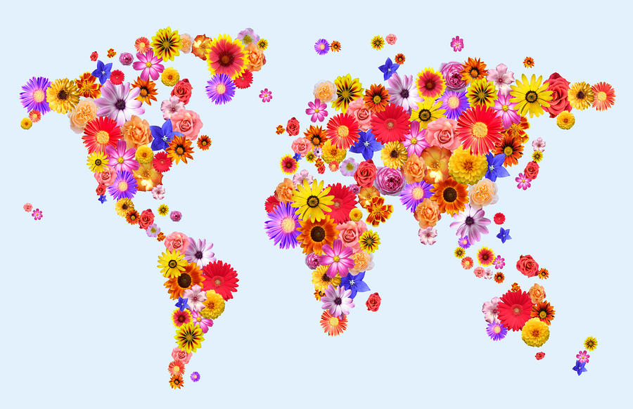 Flower World Map Digital Art
