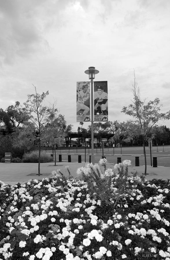 Flowers At Citi Field In Black And White Photograph