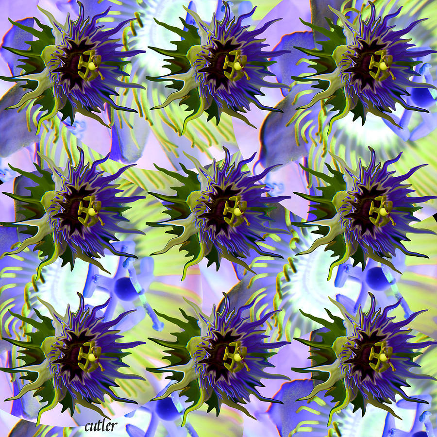 Flowers On The Wall Digital Art  - Flowers On The Wall Fine Art Print