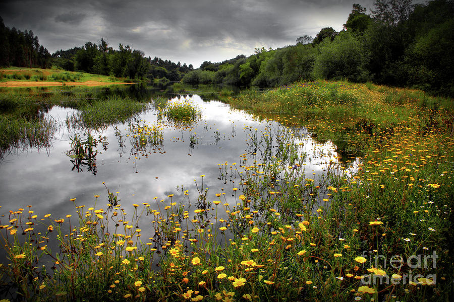 Flowery Lake Photograph