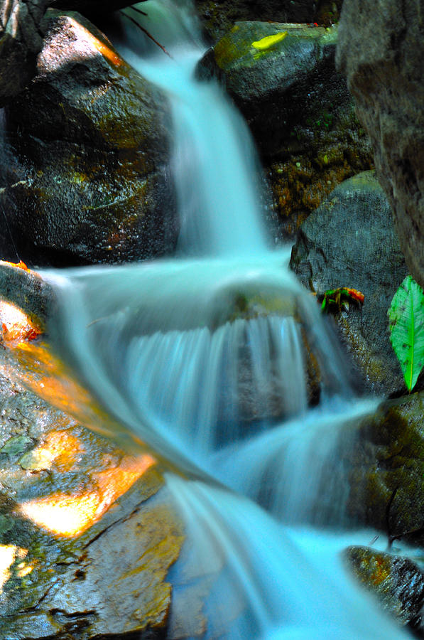Flowing Stream Photograph  - Flowing Stream Fine Art Print