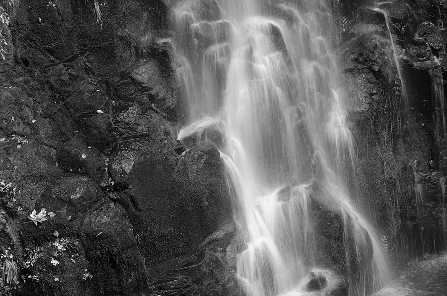 Flowing Water Photograph  - Flowing Water Fine Art Print