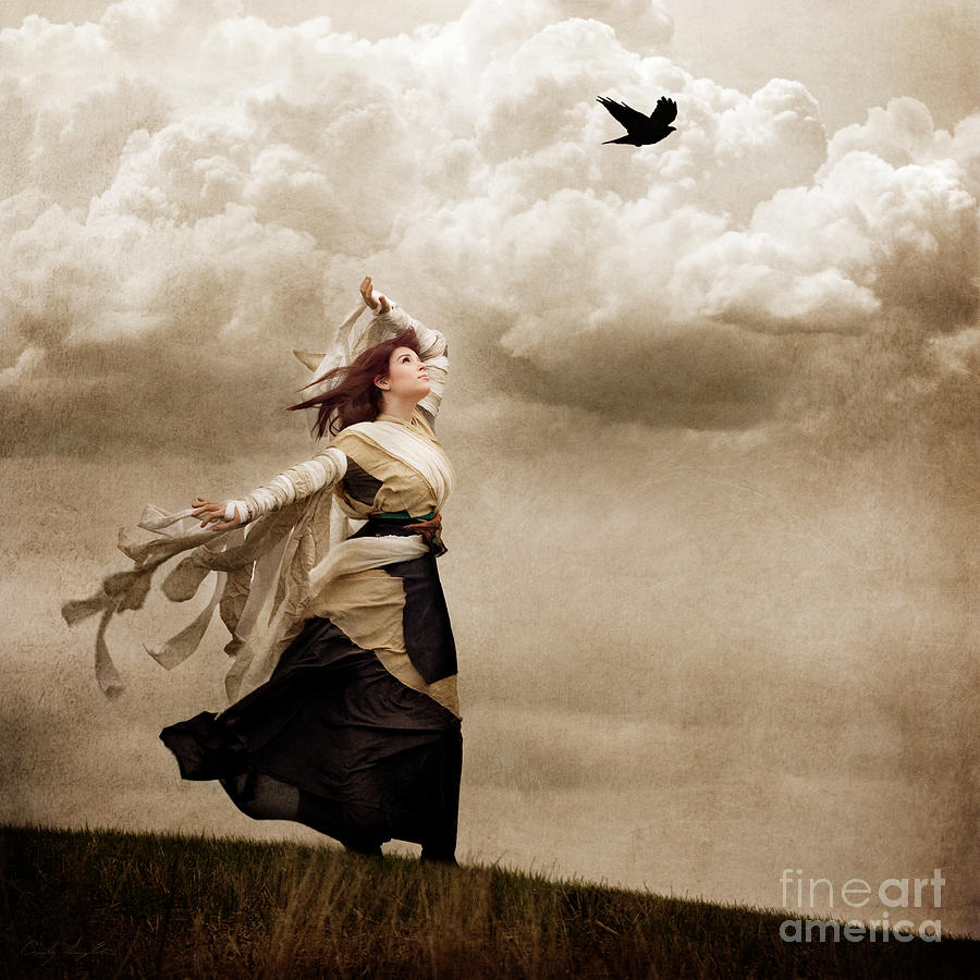Flying Dreams Digital Art  - Flying Dreams Fine Art Print