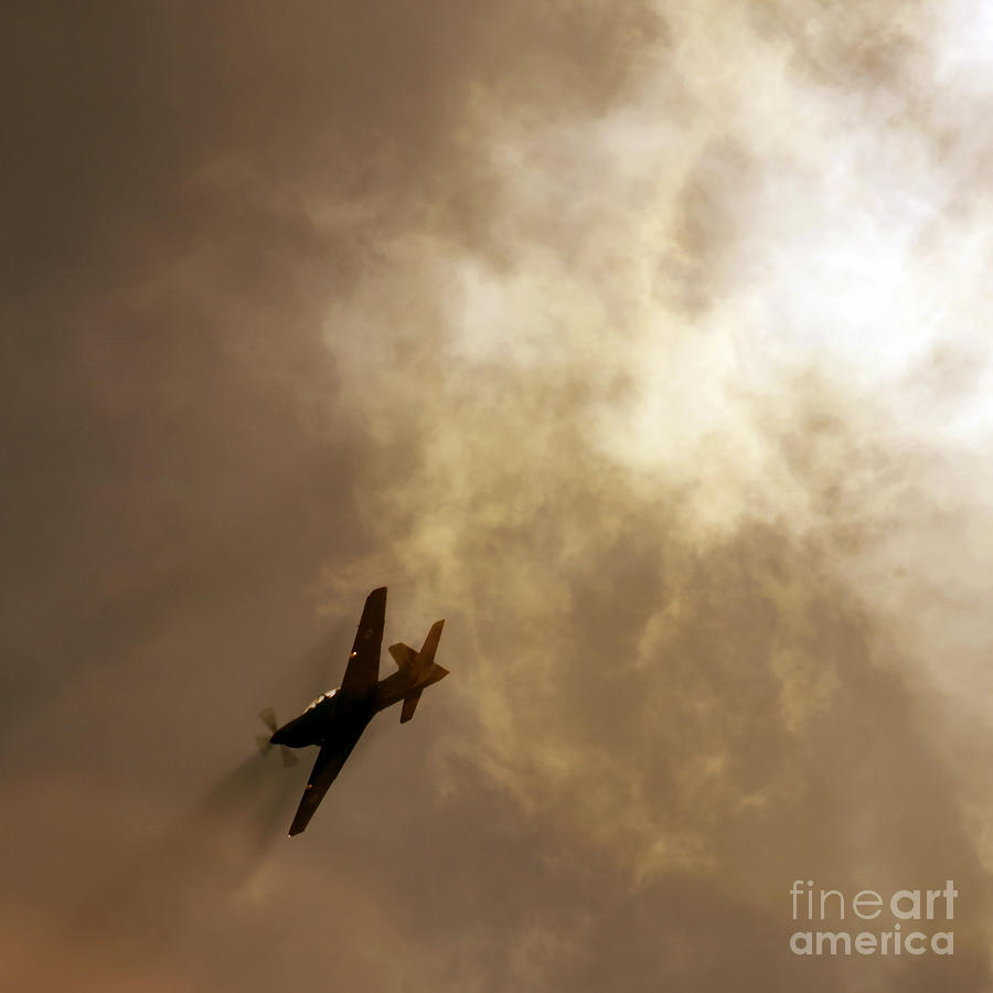 Flying High Photograph  - Flying High Fine Art Print