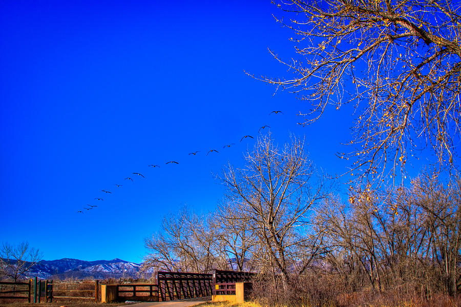 Flying Over South Platte Park Photograph