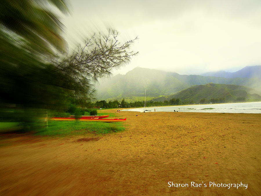 Focal Beach Photograph