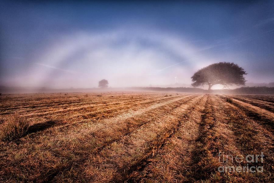Fog Bow Photograph