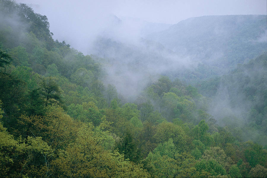 Geological Formations Photograph - Fog Drifts Across A Cove In Tennessee by Stephen Alvarez