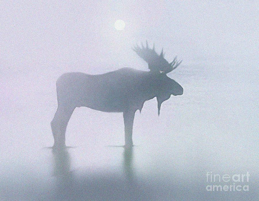 Fog Moose Painting