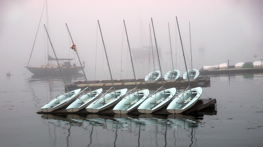 Fogged In Photograph