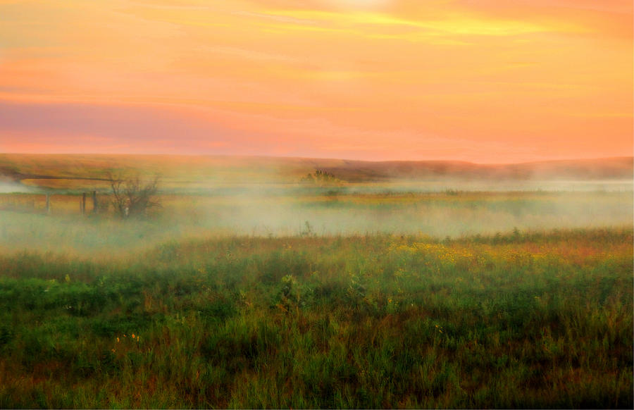 Foggy Morning Sunrise Photograph  - Foggy Morning Sunrise Fine Art Print
