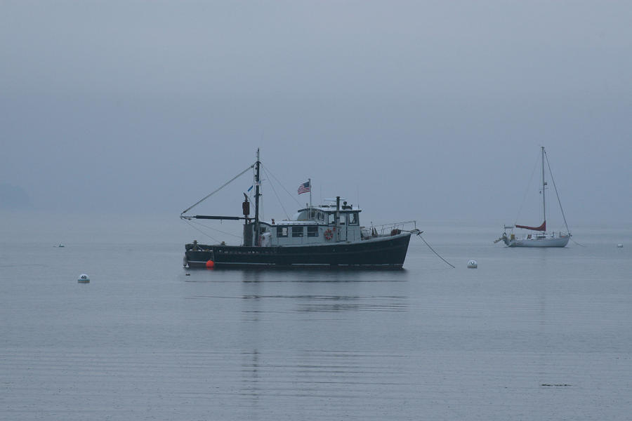 Foggy Start To The Day Penobscot Bay Maine Photograph