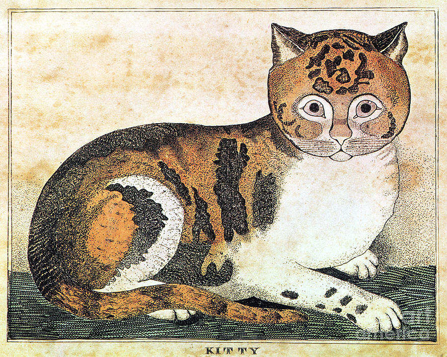 Folk Art: Cat Photograph
