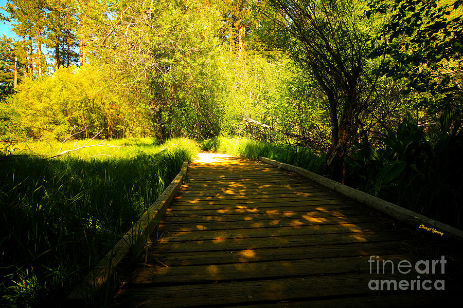 Follow The Path Photograph  - Follow The Path Fine Art Print