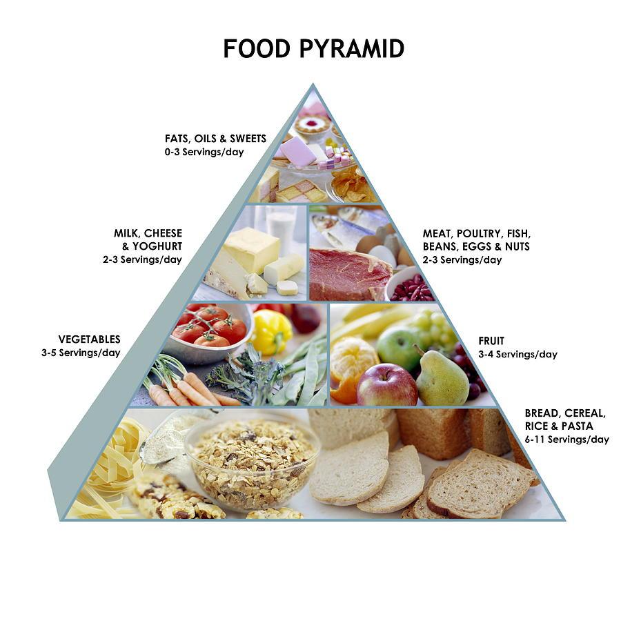 Food Pyramid Photograph