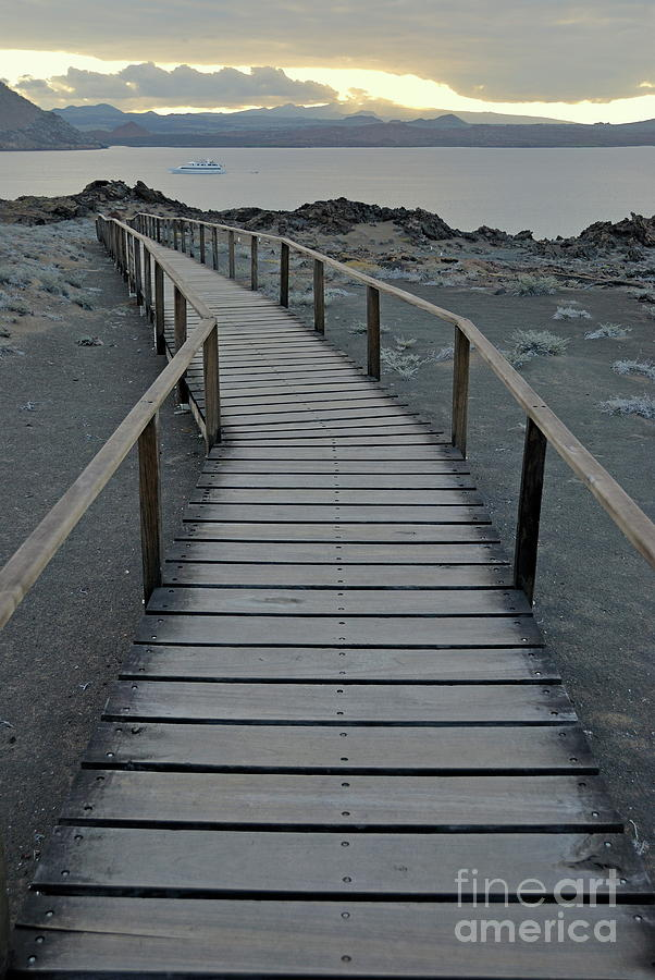 Footbridge On Volcanic Landscape Photograph