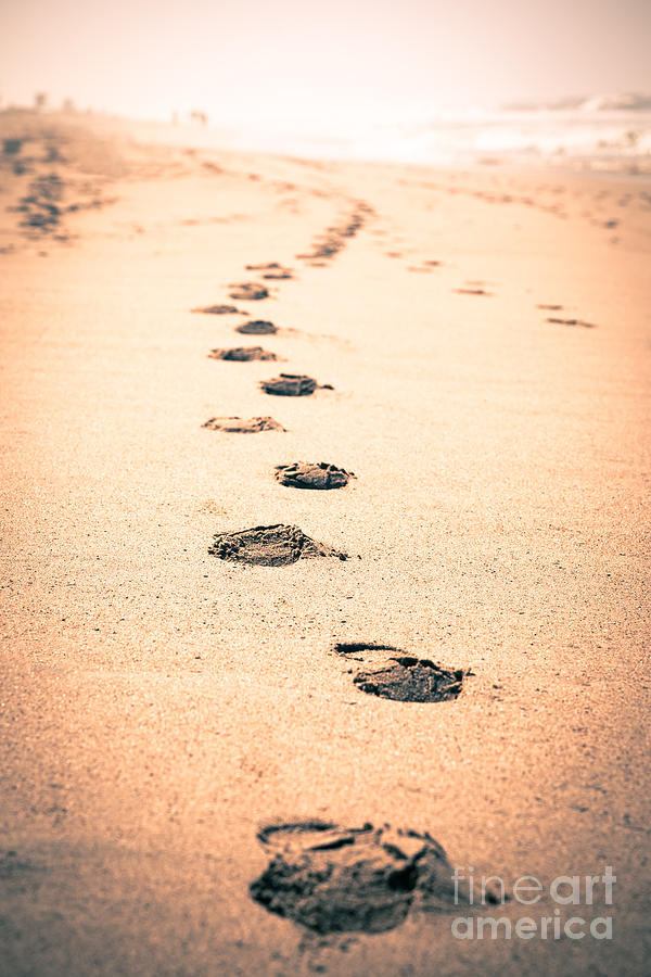 Footprints In Sand Photograph