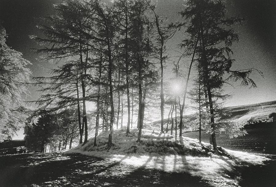 Forelacka Burial Ground Photograph