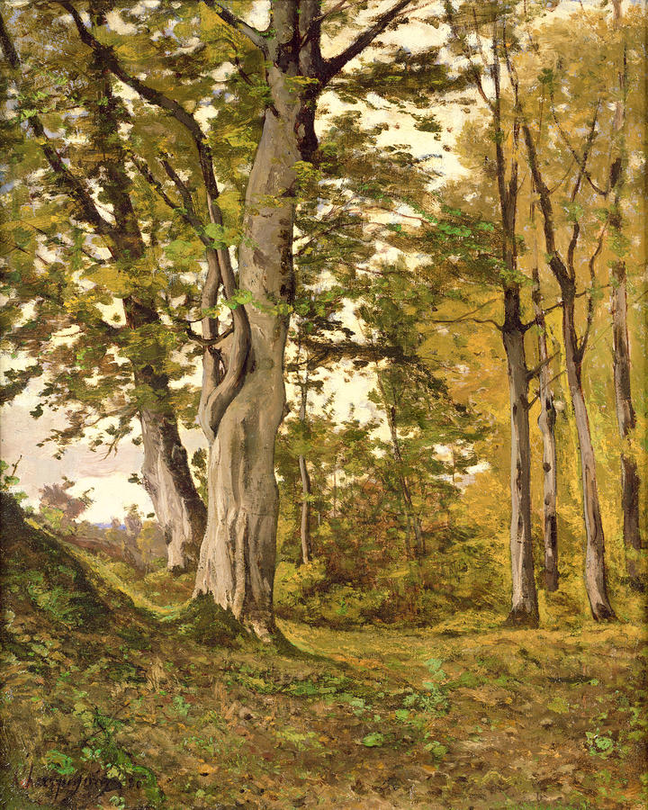 Forest At Fontainebleau Painting  - Forest At Fontainebleau Fine Art Print