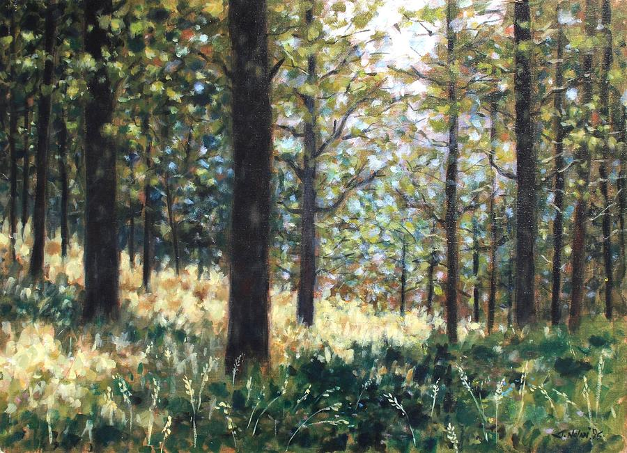 Forest- County Wicklow - Ireland Painting  - Forest- County Wicklow - Ireland Fine Art Print