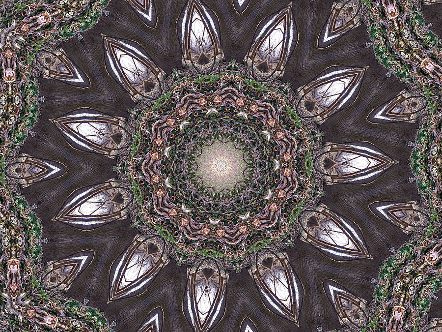 Forest Mandala 1 Digital Art