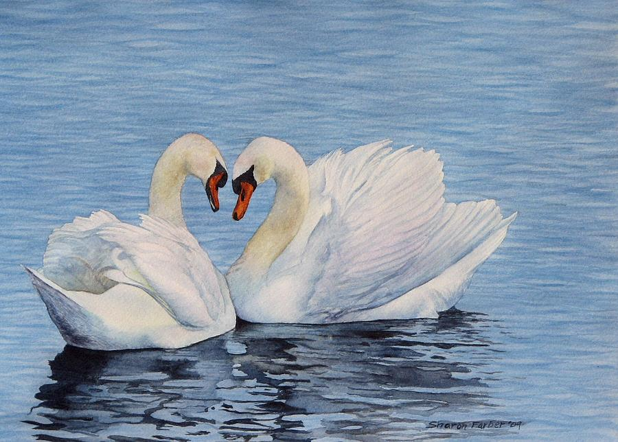 Forever Swans Painting