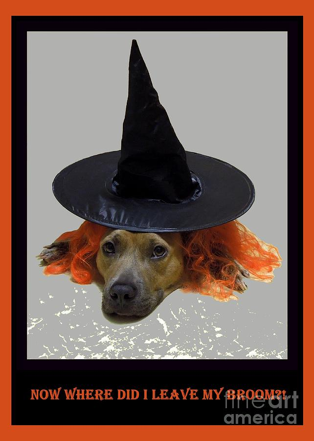 Halloween Photograph - Forgetful by Renee Trenholm