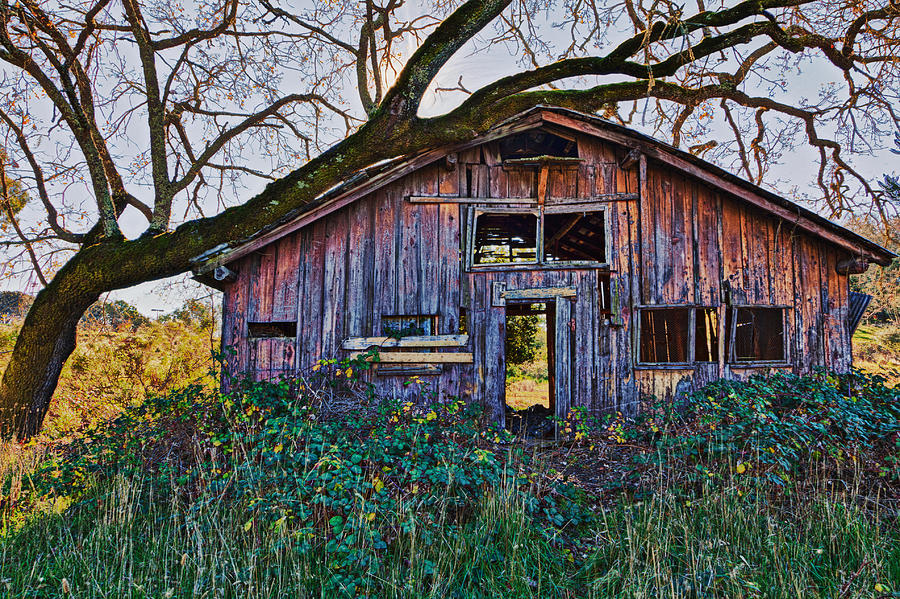 Forgotten Barn Photograph