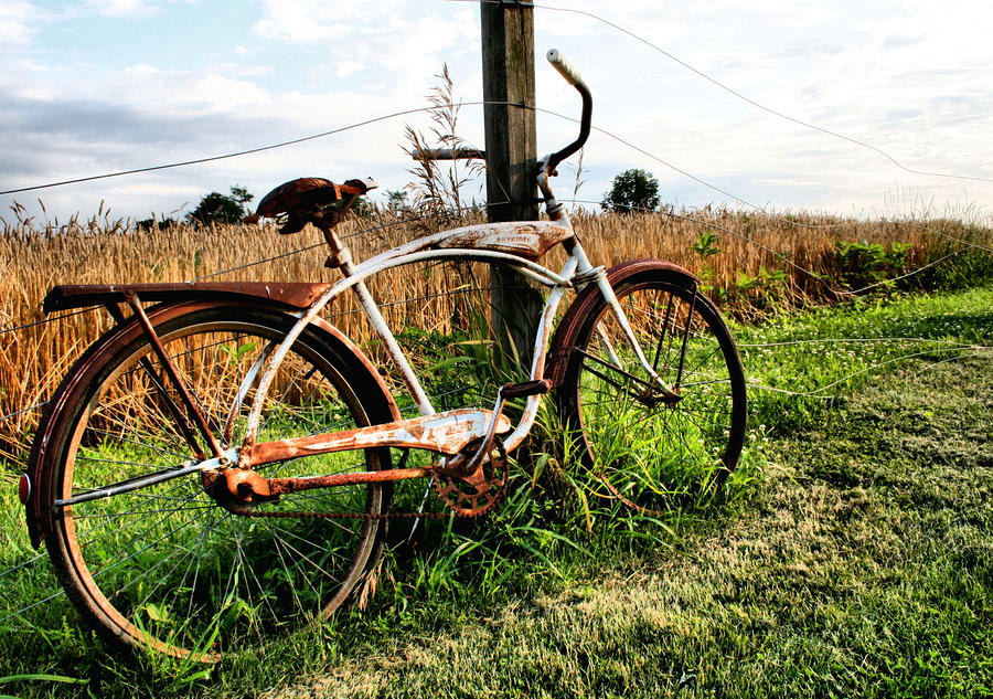 Forgotten Bicycle Photograph  - Forgotten Bicycle Fine Art Print