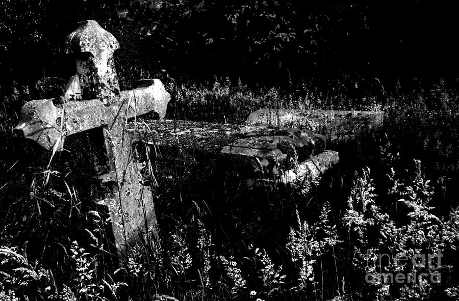 Forgotten Headstones Photograph