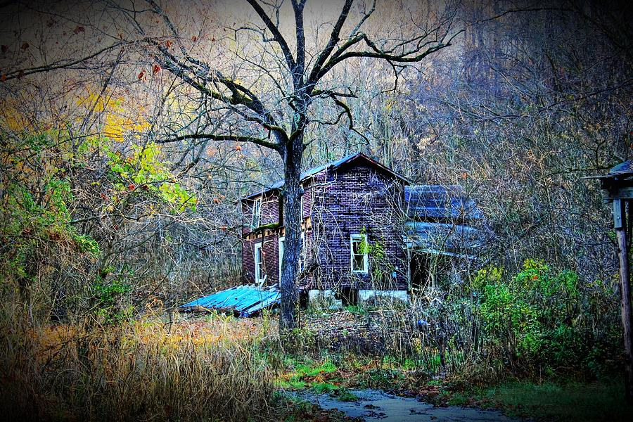 Forgotten Lot Photograph  - Forgotten Lot Fine Art Print