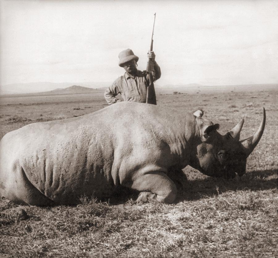 Former President, Theodore Roosevelt Photograph