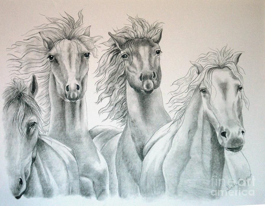 Four For Freedom Drawing  - Four For Freedom Fine Art Print