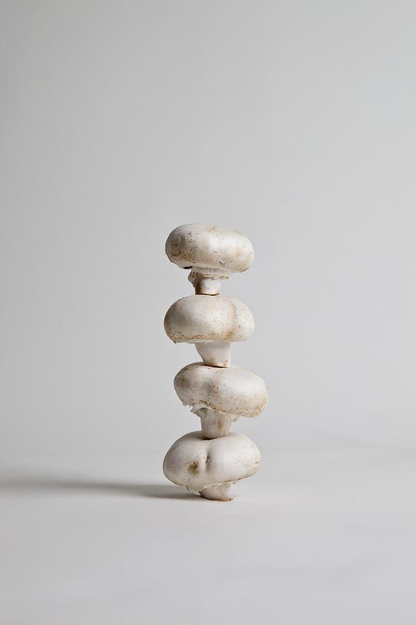 Vertical Photograph - Four Mushrooms Arranged In A Stack, Studio Shot by Halfdark