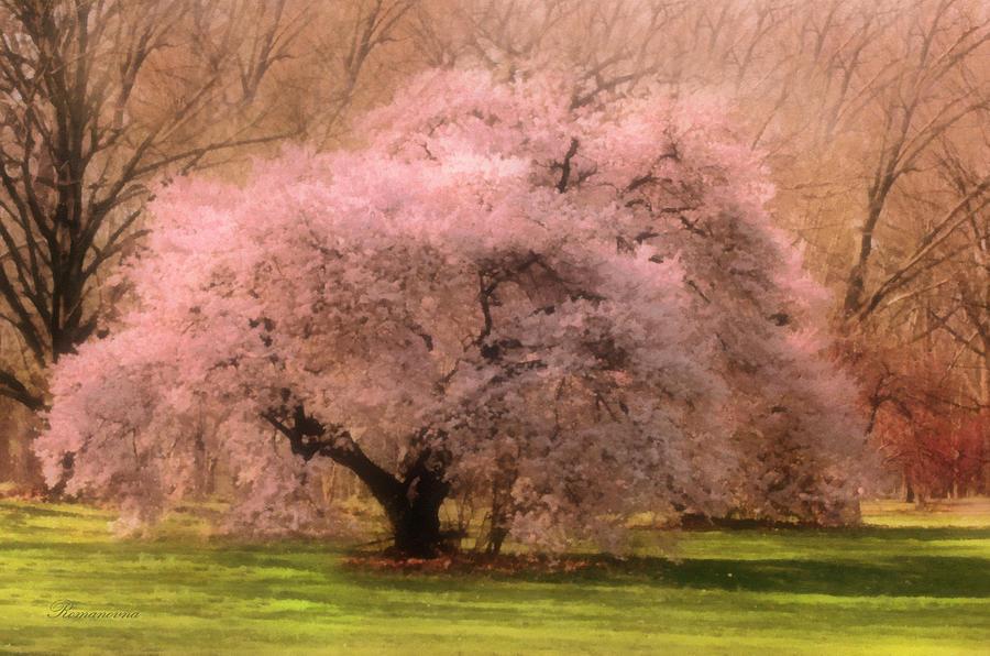 Four Seasons Magical Spring Mixed Media