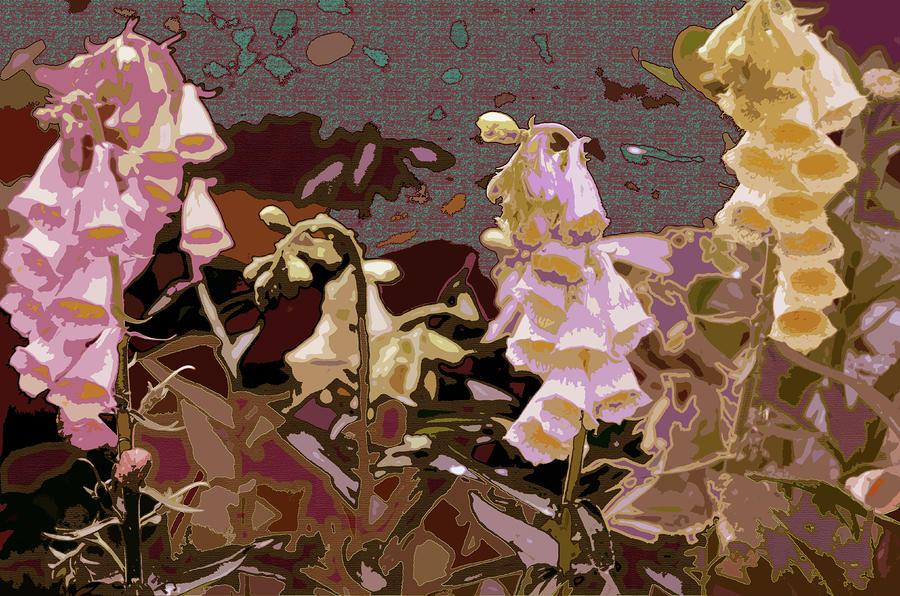 Flowers Photograph - Foxglove by Renata Ferenc