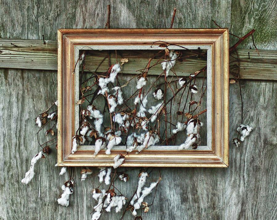 Framed Cotton Painting