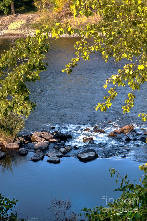 Idaho Photograph - Framed Rapids by Robert Bales