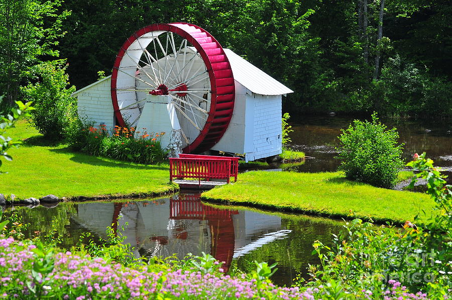 Franconia Notch Waterwheel Photograph  - Franconia Notch Waterwheel Fine Art Print