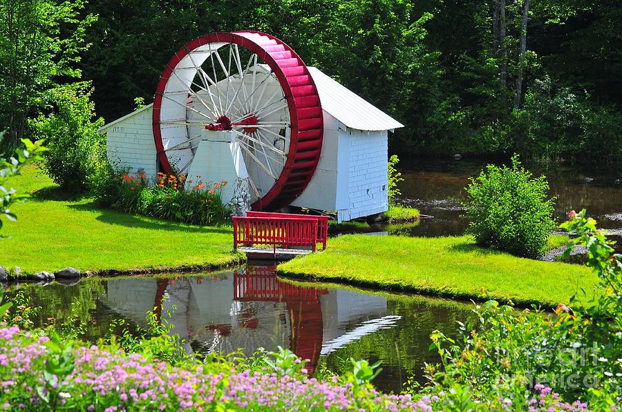 Waterwheel Photograph - Franconia Notch Waterwheel by Catherine Reusch  Daley