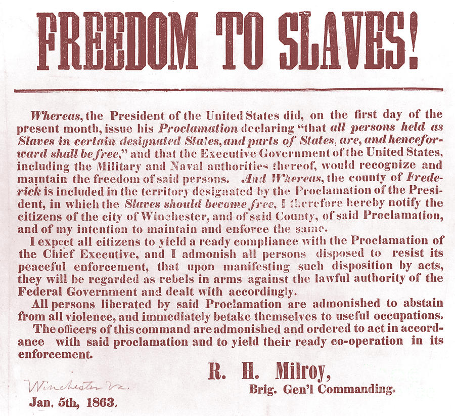 Freedom To Slaves Photograph