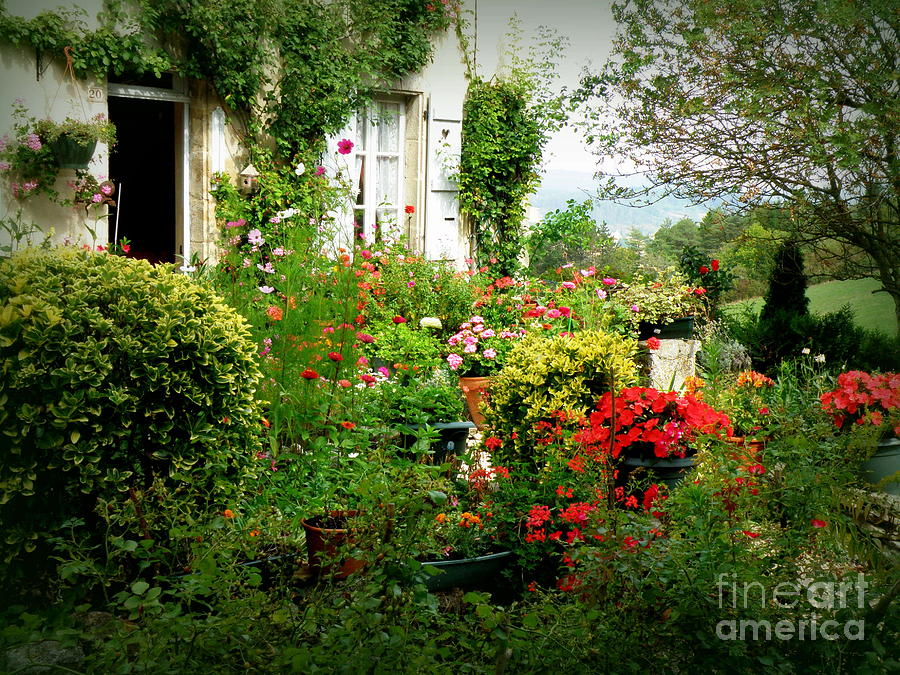 french cottage garden photograph by lainie wrightson